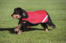 Horseware Rambo Duo Dog Rug